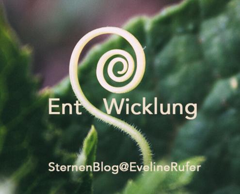 SternenBlog 26.8.19 @EvelineRufer
