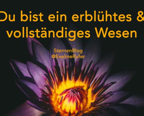 SternenBlog 27.8.19 @EvelineRufer